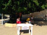 В Русе тече проучване за кандидатурата за кмет на Общината на Елеонора Николова