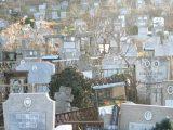 Нова напаст тормози близките на покойници в Русе