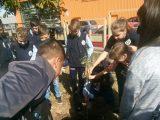 Седмокласници засадиха бреза в двора на СУ